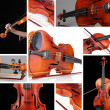 Collage of classical violin — Stock Photo #35398525
