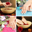 Collage of beautiful woman manicure — Stock Photo #35398533