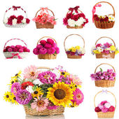 Collage of beautiful flowers in wicker baskets isolated on white — Stock Photo