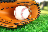 Baseball glove and ball on grass in park — Stock Photo