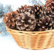Stock Photo: Beautiful pine cones in wicker basket isolated on white