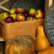 Pumpkins on straw and apples in basket on shelf close up — Stock Photo