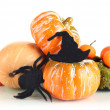 Photo: Halloween composition, isolated on white