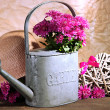 Bouquet of pink chrysanthemum in watering can on wooden table — ストック写真