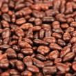 Sunflower grains in chocolate, close up — Stock Photo