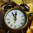 Stok fotoğraf: Old clock on autumn leaves close-up