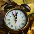 Foto de Stock  : Old clock on autumn leaves close-up