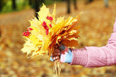 Bouquet of yellow leaves in hand — Stock Photo