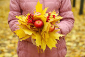 Bouquet of yellow leaves in hands — Stock Photo