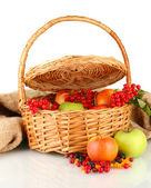 Crop of berries and fruits in a basket on white background close-up — ストック写真