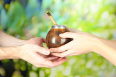 Woman hands giving calabash and bombilla with yerba mate, on nature background — Stock Photo