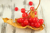 Red berries of viburnum with yellow leaf on wooden background — Stock Photo