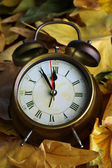 Old clock on autumn leaves close-up — Stock Photo