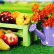 Different fruits with box and flowers on grass on bright background — Stock Photo
