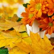 Beautiful autumn leaves with flowers in wooden stand on grass on bright background — Stok fotoğraf