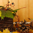 Beautiful autumn leaves with bumps and basket on table on wooden background — Stock fotografie
