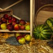 Apples in basket and watermelons on shelf close up — Stock Photo
