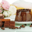 Yummy chocolate cake close-up — Stok fotoğraf