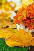 Beautiful autumn leaves with flowers in wooden stand on grass on bright background — Stock Photo