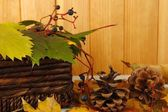 Beautiful autumn leaves with bumps and basket on table on wooden background — 图库照片