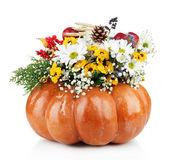 Schöne Herbst Komposition in Kürbis isoliert auf weiss — Stockfoto