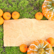Old paper, small tangerines and pumpkins on green moss background — Stock Photo
