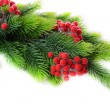 Christmas decorations on fir tree, isolated on white — Stock Photo #35576113