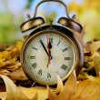 Foto Stock: Old clock on autumn leaves on wooden table on natural background