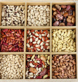 Diverse beans in wooden box sections isolated on white — Stock Photo