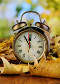 Old clock on autumn leaves on wooden table on natural background — Fotografia Stock
