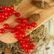 Red berries of viburnum on stand with hay and bumps on wooden background — Foto Stock #35696915