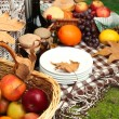 Stock Photo: Outdoors picnic close up