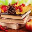 Books and autumn leaves on wooden table on natural background — Stock Photo #35697883