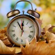 Old clock on autumn leaves on wooden table on natural background — Stok fotoğraf