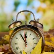 Foto Stock: Old clock on autumn leaves on natural background