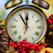 Old clock on autumn leaves on natural background — Stockfoto #35698793