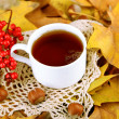 Cup of hot beverage, on yellow leaves background — Stock Photo