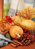 Ripe pumpkins on chair on natural background — Stock Photo
