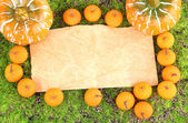 Old paper, small tangerines and pumpkins on green moss background — Photo