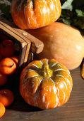 Halloween composition on dark grey background — Stock Photo