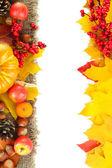 Beautiful autumn composition, isolated on white — Stockfoto