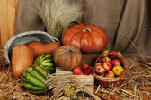 Pumpkins and apples in baskets with watermelons on straw on sackcloth background — Stock Photo