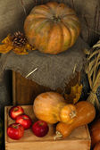 Pumpkins and apples on crates on sackcloth background — 图库照片