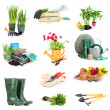 Collage of gardening equipment isolated on white — Stock Photo