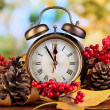 Old clock on autumn leaves on wooden table on natural background — Stock Photo #35823183
