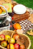 Outdoors picnic close up — Stock Photo