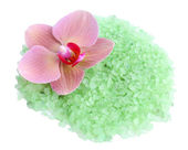 Beautiful blooming orchid flower and heap of sea salt — Stock Photo