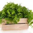 Wooden box with parsley and dill isolated on white — Stock Photo #35833219
