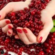 Stock Photo: Womhands holding ripe red cranberries, close u