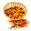 Colorful autumn berries in wicker basket isolated on white — Stock Photo